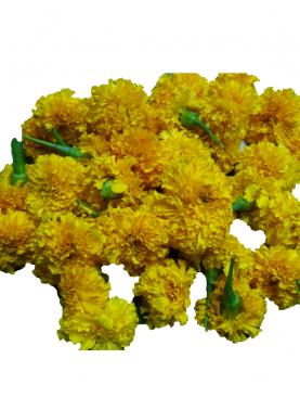 Marigold / செண்டிகைப்பூ